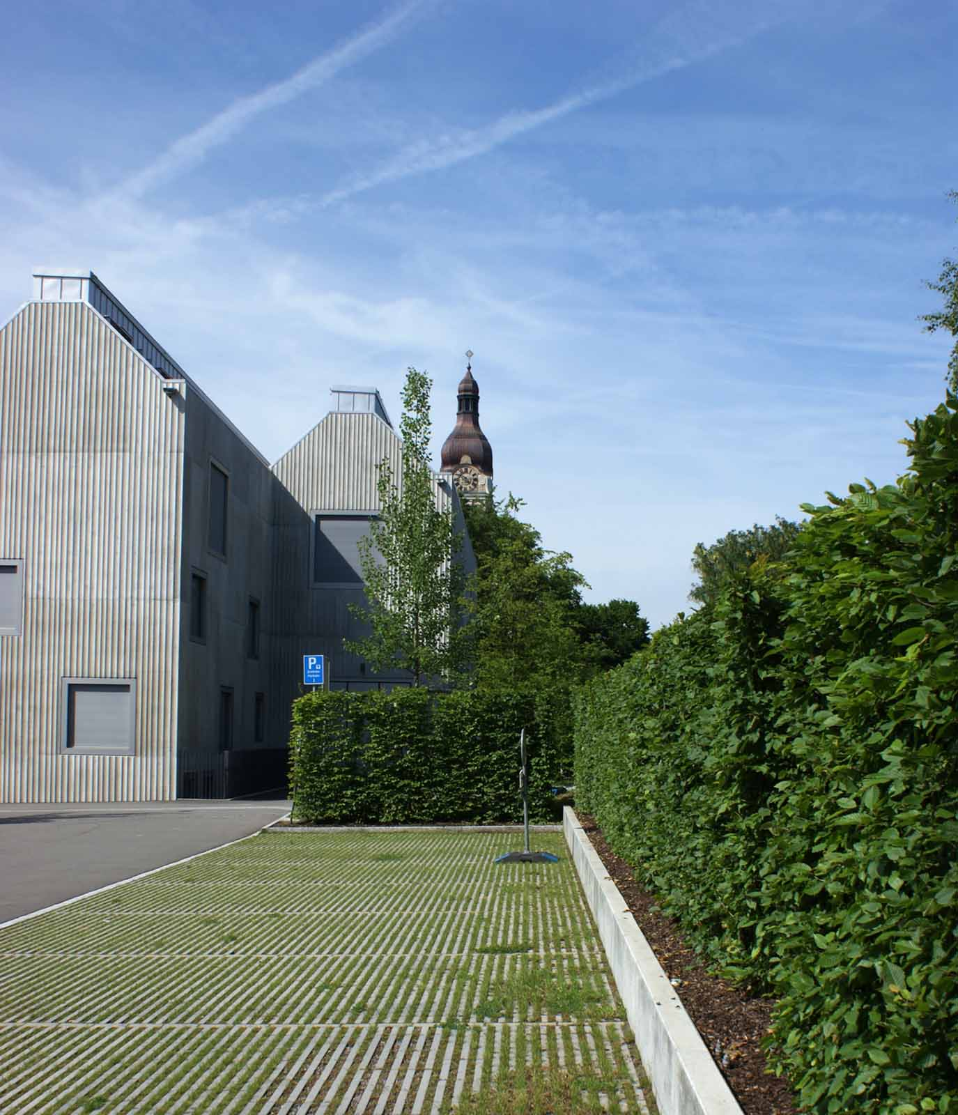 Aussem_Gartenbau_naturmuseum_StGallen_2018-003