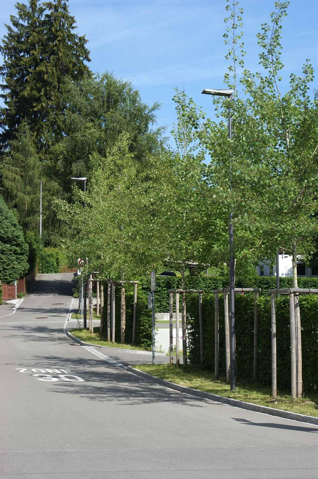Aussem_Gartenbau_naturmuseum_StGallen_2018-006